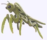 7 in. Praying Mantis Finger Puppet